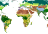 Map of the biomes of the world