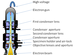 Diagram of a transmission electron microscope