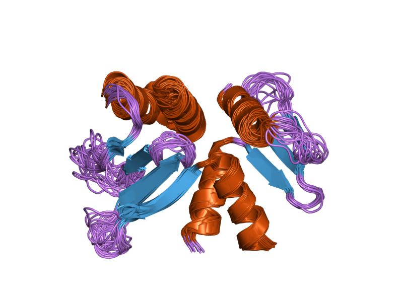 Diagram of a kinetochore protein